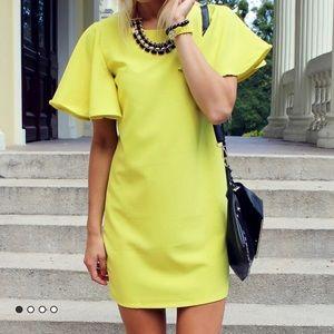 Dresses & Skirts - Bell sleeve shirt dress